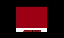 Logo centro nazionale studi di diritto del lavoro Domenico Napoli Sezione Veneto - Labor Law Università di Padova